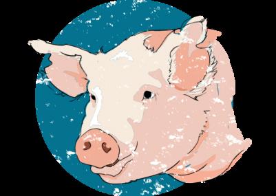 Vintage-Pork-Bacon-T-shirt